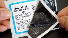 #1032DR-B, white removable oil change, service reminder, and medicine labels with a blue border
